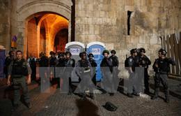 Israel bắt hàng chục người Palestine trong chiến dịch truy quét