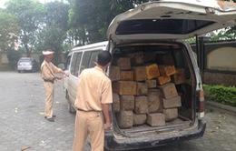 Lâm Đồng: Phát hiện và bắt giữ hai xe chở gỗ lậu trong đêm