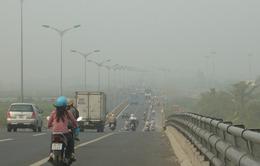 Thành phố Cần Thơ chìm ngập trong sương mù