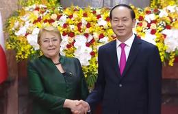 Tổng thống Chile thăm cấp Nhà nước Việt Nam