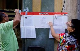 Cử tri Cuba tham gia cuộc bầu cử địa phương