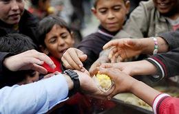 76 triệu người cần cứu trợ lương thực khẩn cấp trong năm 2018