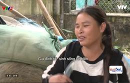 Cuộc sống khó khăn của cặp vợ chồng khuyết tật vùng bãi ngang ven biển