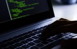 Mỹ cảnh báo nguy cơ tin tặc Nga xâm nhập công ty điện lực