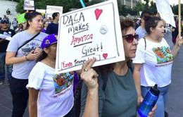 Mỹ bãi bỏ chương trình bảo vệ trẻ nhập cư