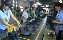 Năm 2017, xuất khẩu da giày - túi xách dự kiến đạt 18 tỷ USD