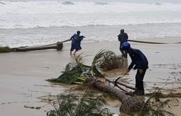 Đà Nẵng: Công an, Bộ đội Biên phòng khắc phục mưa lũ phục vụ APEC