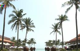 APEC 2017 - Cơ hội quảng bá du lịch Đà Nẵng