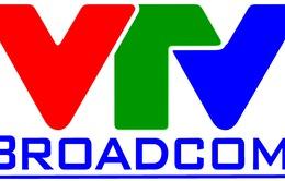 Thông tin về bán đấu giá cổ phần của công ty TNHH Dịch vụ - Truyền hình Viễn thông Việt Nam