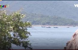 Gia tăng khai thác thủy sản tận diệt tại đầm Nha Phu, Khánh Hòa