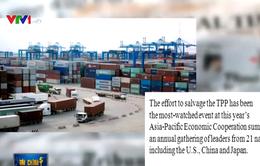 CPTPP - Đột phá lớn của thương mại tự do khu vực
