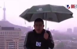 Đang dẫn chương trình, 1 biên tập viên Trung Quốc bị sét đánh