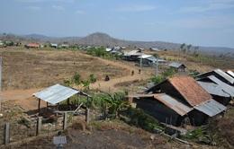 Đắk Lắk nỗ lực ổn định đời sống đồng bào di cư ngoài kế hoạch