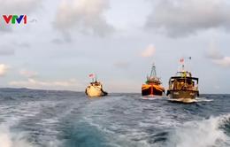 Bình Thuận xử phạt hàng trăm tàu thuyền đánh bắt hải sản tận diệt