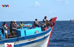 Bắt giữ 4 tàu cá đánh bắt trái phép tại vùng biển Malaysia