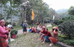 Lâm Đồng: Hỗ trợ phụ nữ nghèo sinh con đúng chính sách dân số