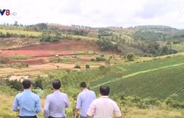 Đăk Nông thu hồi 12ha đất quốc phòng cấp nhầm