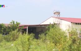 Khắc phục tình trạng đất nông nghiệp bị trục lợi tại huyện Đông Anh (Hà Nội)