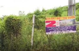 Phần mềm của Đồng Nai giúp người dân tra cứu được tình trạng đất
