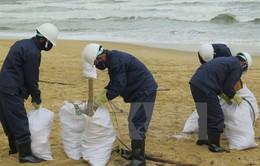 Quảng Nam kiến nghị Bộ TN&MT hỗ trợ xác định nguyên nhân dầu vón cục