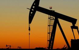 Iraq có kế hoạch tăng sản lượng dầu mỏ