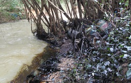 Xử lý sự cố trên 800 lít dầu tràn ra suối gây ô nhiễm ở Bình Phước