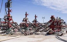 Bloomberg: Các tập đoàn lớn đầu tư 10 tỷ USD vào ngành dầu đá phiến tại Mỹ