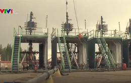 Trung Quốc lên kế hoạch đầu tư vào ngành dầu khí Mỹ