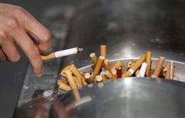 UAE tăng giá thuốc lá, đồ uống tăng lực