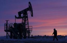 OPEC gia hạn thỏa thuận cắt giảm sản lượng dầu tới tháng 3/2018