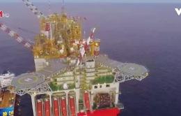 Đại gia dầu khí Shell đầu tư vào xe điện