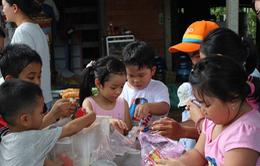 TP.HCM: Không dạy văn hóa cho học sinh trong dịp hè