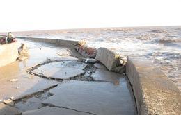 Kiên Giang: Đê biển Tây sạt lở nặng nề