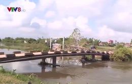 Nhiều hệ thống đê bao tại Thừa Thiên Huế xuống cấp nghiêm trọng