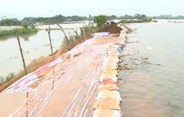 Đê sông Bùi tiếp tục có nguy cơ sạt lở