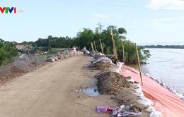 Mưa lũ tại Thanh Hóa, nhiều tuyến đê hư hỏng nghiêm trọng