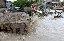 Cà Mau: Đê biển Tây lại sạt lở nghiêm trọng