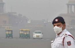 Khói mù độc hại do đốt rơm rạ tại New Delhi, Ấn Độ