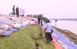 Thanh Hóa: Hàng chục tuyến đê trọng yếu bị hư hại