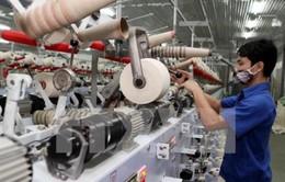 TP.HCM: Vốn doanh nghiệp đăng ký thành lập mới tăng mạnh