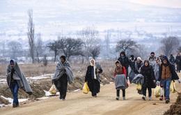 Người tị nạn châu Âu vật lộn với giá lạnh