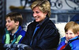 Tranh cãi xung quanh việc đào bới những bí mật của Công nương Diana