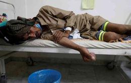 Nguy cơ dịch bệnh dịp lễ hành hương tại Saudi Arabia