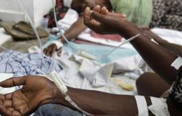 Cơ chế hoạt động và sự nguy hiểm của bệnh tả