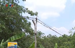 Bức xúc đường điện tạm câu vào xóm nghèo Bình Phước