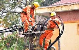 Gấp rút hoàn thành hệ thống điện phục vụ APEC