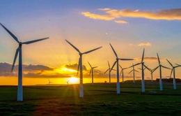 Bùng nổ đầu tư lĩnh vực điện gió tại Anh
