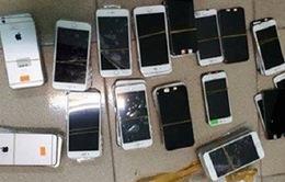 Thu giữ nhiều điện thoại iPhone không rõ nguồn gốc ở Hà Nội