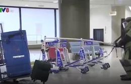 Nhật Bản lần đầu tiên diễn tập chống khủng bố tại sân bay
