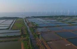 Thúc đẩy năng lượng tái tạo: Thời cơ đã đến